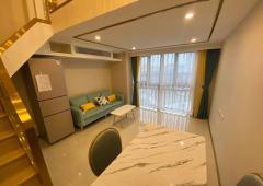 Loft公寓出售精装修